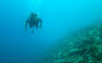 easyRESCUE-DIVEpro auf den Malediven im Einsatz